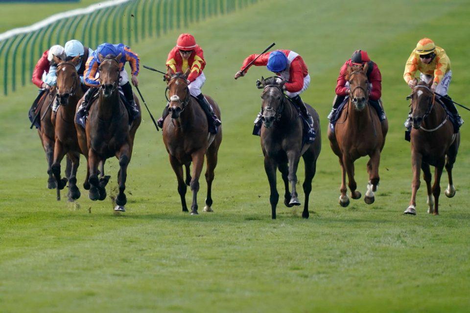 Tips Horse Racing Betting