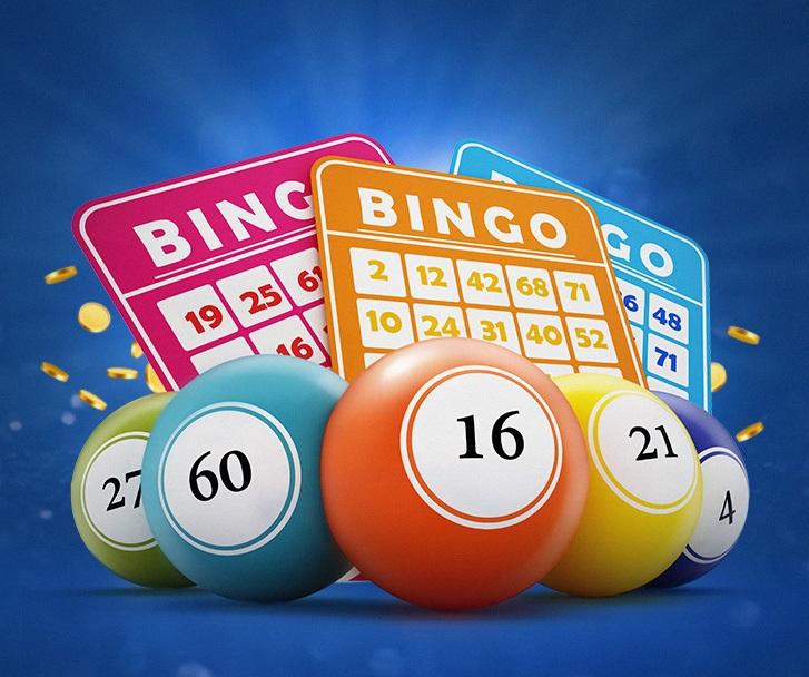 Playing New Bingo Online